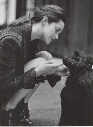 Светът на Лора: За кучките... и кучетата