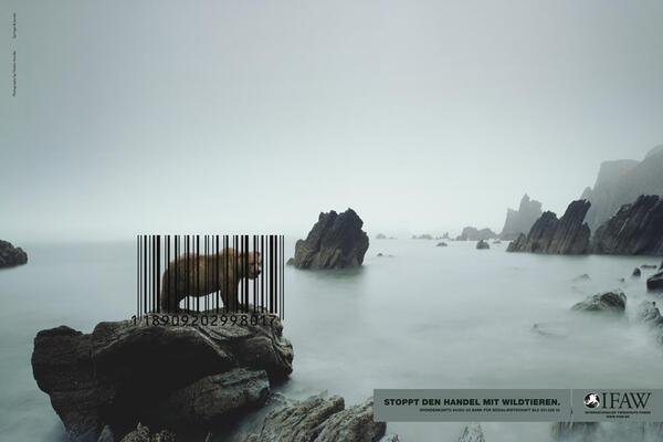 Разтърсващи социални реклами срещу насилието над животни
