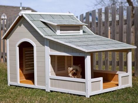 <p>Ако имате куче и къща с двор, тези идеи за къщички за домашния ви любимец ще ви бъдат от полза. Те са малки и функционални, могат лесно да бъдат преместени на друго място при нужда, и са сигурно убежище за кучето през дъждовните дни. Освен това са красиви и ще бъдат очарователна част от интериора на двора ви.</p>