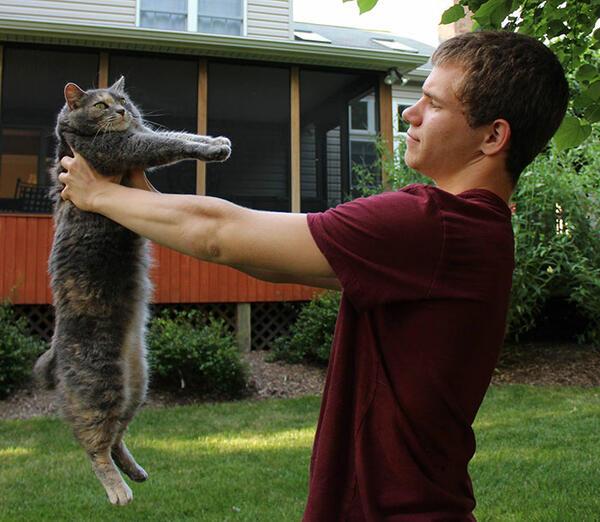 Да отидеш на бал със своята... котка!