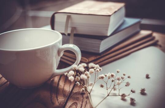 9 професии за хората, които обичат книгите