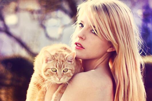 Няколко знака, че се нуждаете по-скоро от котка, отколкото от мъж