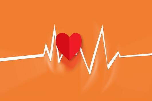Какво трябва да знае всяка жена за сърдечния ритъм