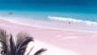 Великолепен розов плаж на Бахамите