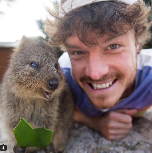 7 страхотни неща, които могат да ви се случат само в Австралия