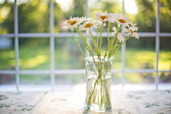 Как да си отгледате билки вкъщи, дори жилището ви да е малко