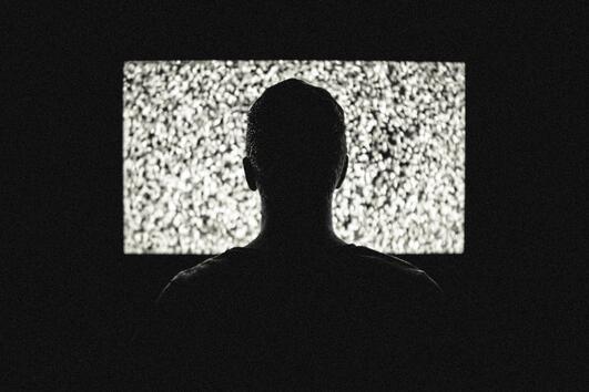 Страшните филми се оказват полезни за здравето