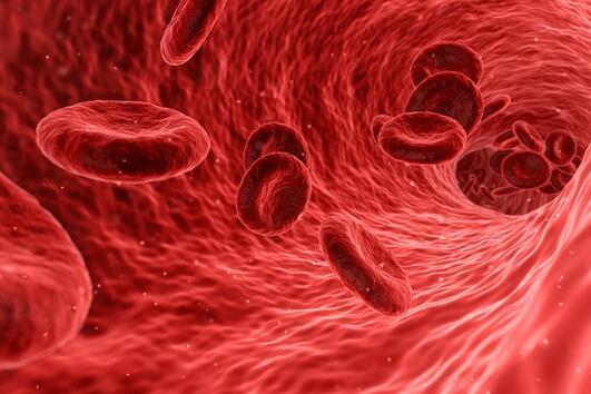 10 предупредителни знака за кръвен съсирек