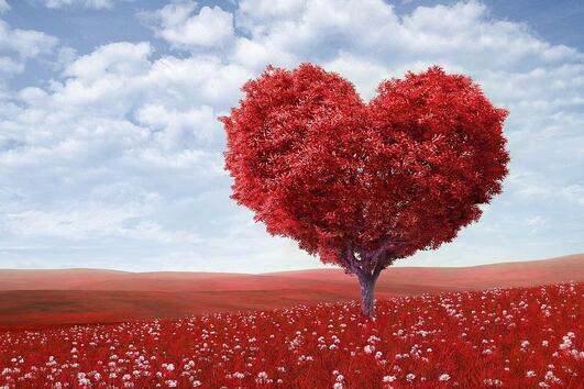 Приказка за любовта