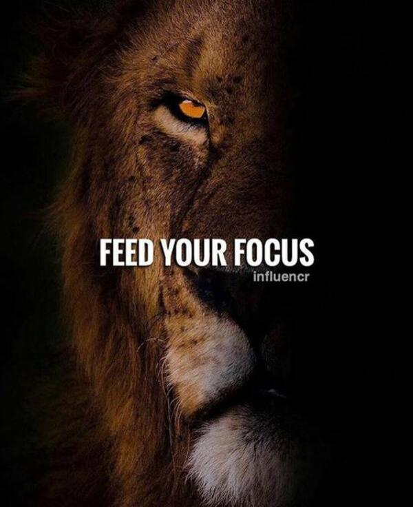 5 мотивиращи цитати за успеха