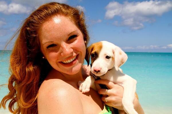 Има Карибски остров, пълен със спасени кученца, които можете да гушкате
