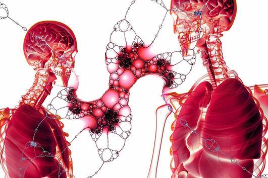 8 невероятни неща, доказващи, че човешкото тяло е най-развитата система в света