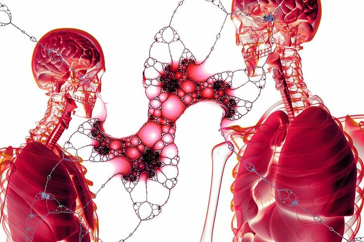 Тялото ни се състои от много парчета от пъзел -
