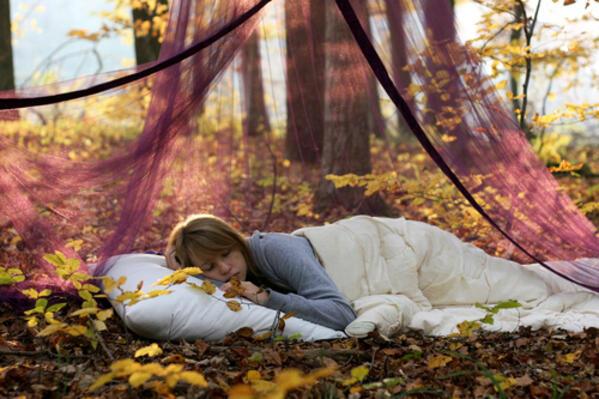 Сънят и неговите неподозирани тайни
