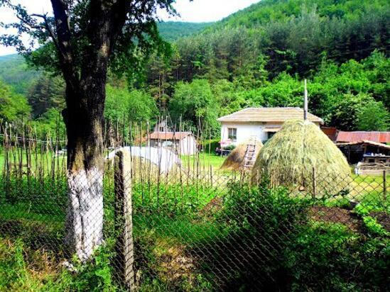 Първата цялостна програма за лечение на анорексия и булимия в България